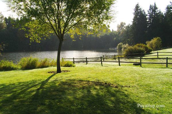 Bradley Lake Park