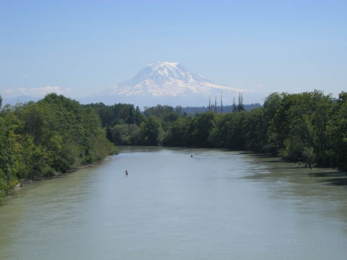 Puyallup river fishing information for Salmon fishing washington rivers