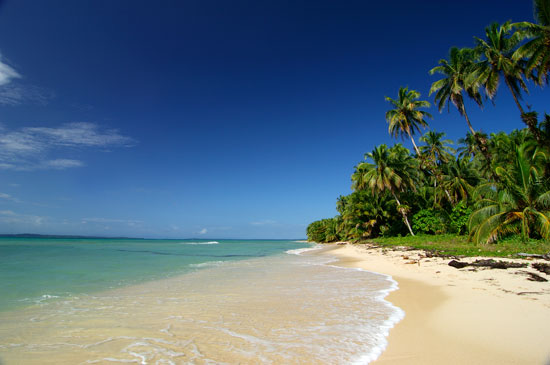 Beach Bocas Del Toro Panama Credit: BocasDelToro.Travel