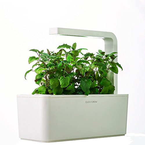 Amazon Prime gift guide herb garden